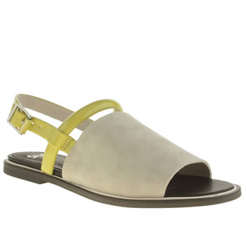 Shellys Grey & Lime Salvant Flats