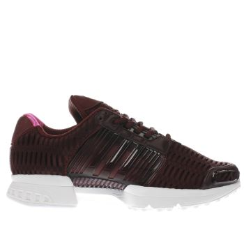 Adidas Burgundy Climacool 1 Womens Trainers