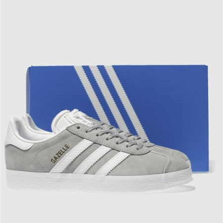 grey gazelles