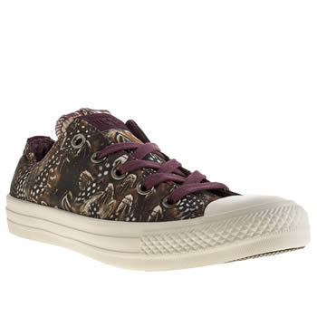 Converse Burgundy All Star Oxford Photo Feathers Trainers