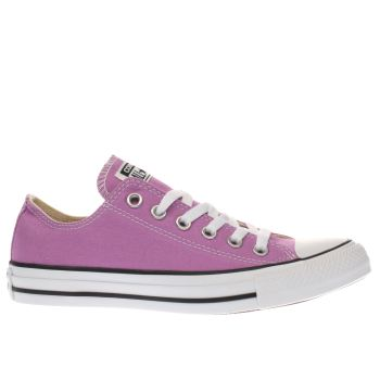 Converse Purple All Star Canvas Ox Trainers