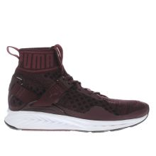 Puma Burgundy Ignite Evoknit Womens Trainers