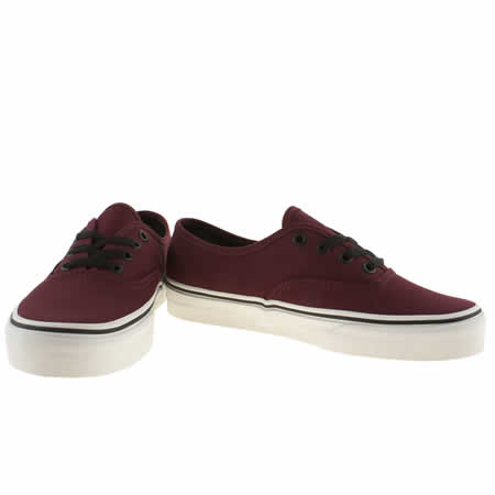 Vans Burgundy Authentic