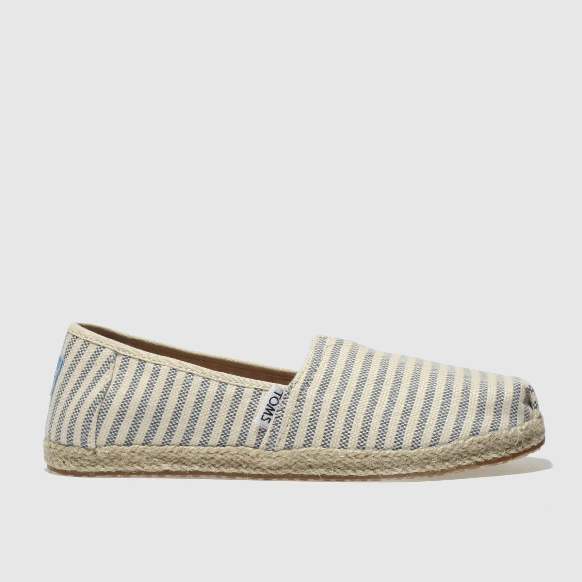 Toms Navy & Cream Classic Youth Shoes