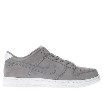 Nike Grey Dunk Low Unisex Youth