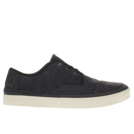 toms paseo sneaker 1