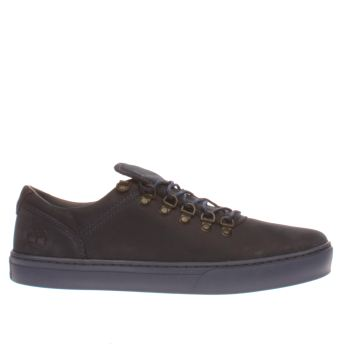 Timberland Navy Adventure 2-0 Cupsole Ox Mens Shoes