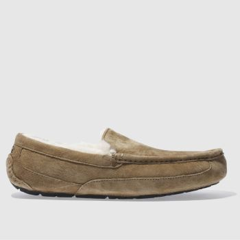 Mens Ugg Australia Tan Ascot Slippers
