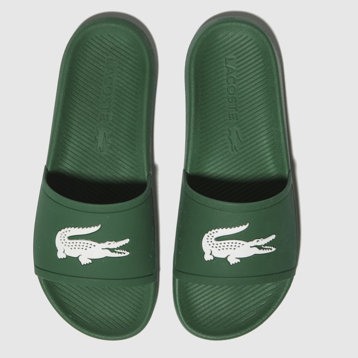 Lacoste Green Croco Slide Sandals