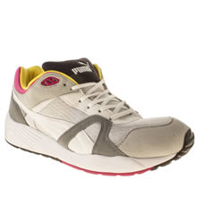 Light Grey Puma Trinomic Compression 500