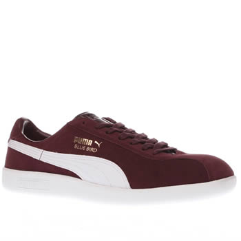 Puma Burgundy Bluebird Trainers