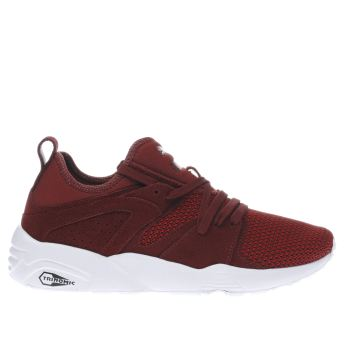 Puma Burgundy Blaze Of Glory Soft Tech Trainers