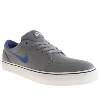 Mens Nike Skateboarding Grey Satire Trainers