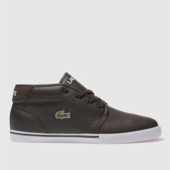 Mens Lacoste Dark Brown Ampthill Lcr Trainers