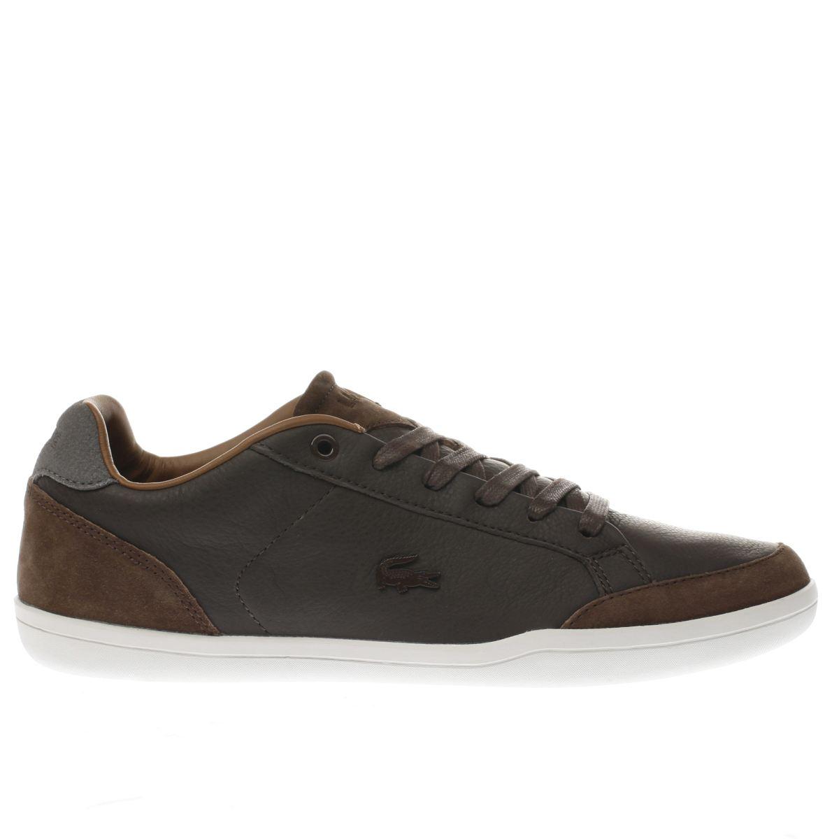 lacoste dark brown set-minimal trainers