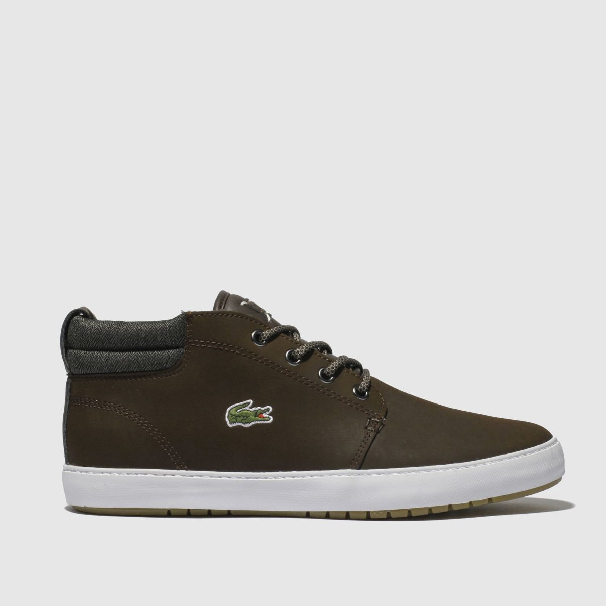 Lacoste Dark Brown Ampthill Terra Trainers