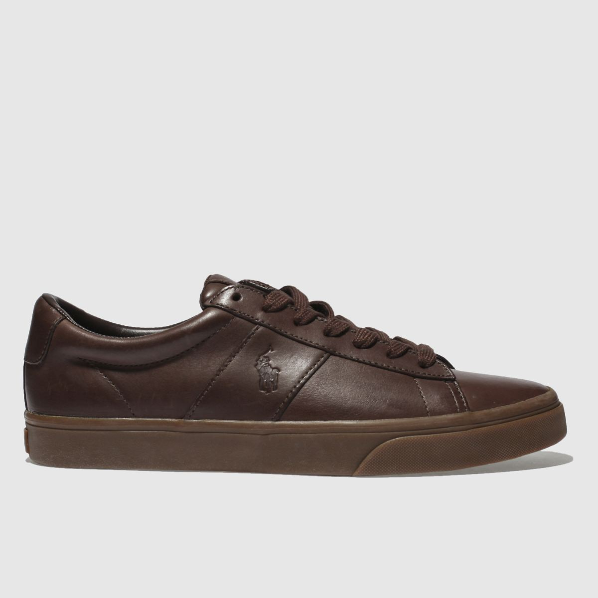 Polo Ralph Lauren Dark Brown Sayer Trainers