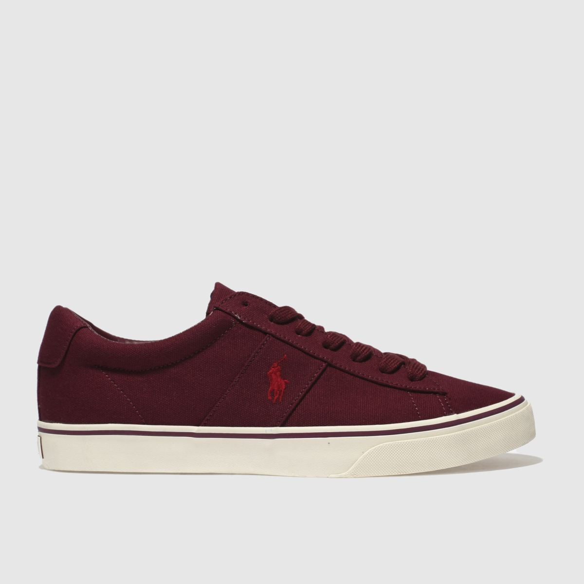 Polo Ralph Lauren Burgundy Sayer Ne Trainers