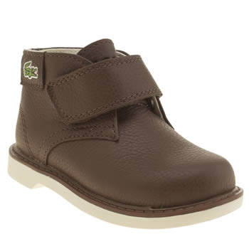 Lacoste Brown Sherbrooke Hi Boys Toddler