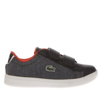 Lacoste Navy & Red Carnaby Evo 416 Boys Toddler
