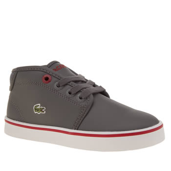 Lacoste Grey Ampthill Boys Toddler