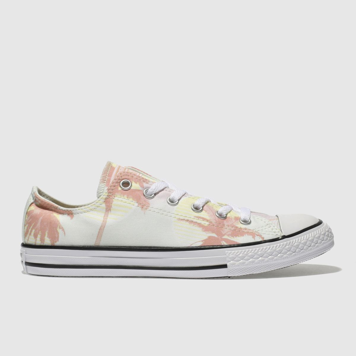 Converse Light Green Chuck Taylor All Star Lo Girls Youth Trainers