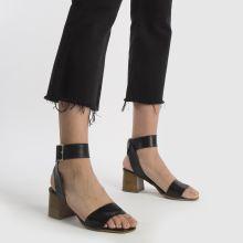 Schuh Charmer 1