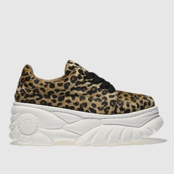 Schuh Beige & Brown Diva Womens Trainers