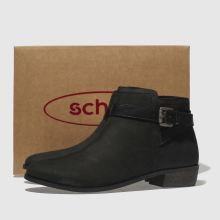 Schuh expedition 1