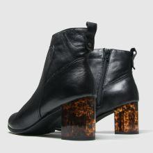 Schuh Roar 1