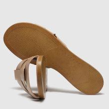 Schuh Geneva 1