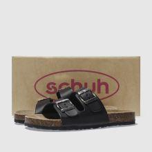 Schuh Hawaii 1