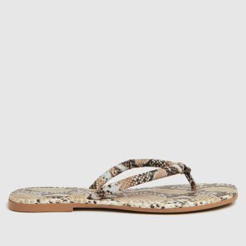 schuh Black & Brown Tassy Toe Post Womens Sandals
