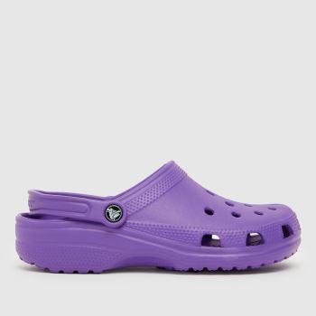 crocs Purple Classic Sandal Womens Sandals