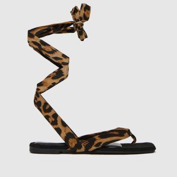 schuh Black & Brown Tazia Square Toe Tie Womens Flats