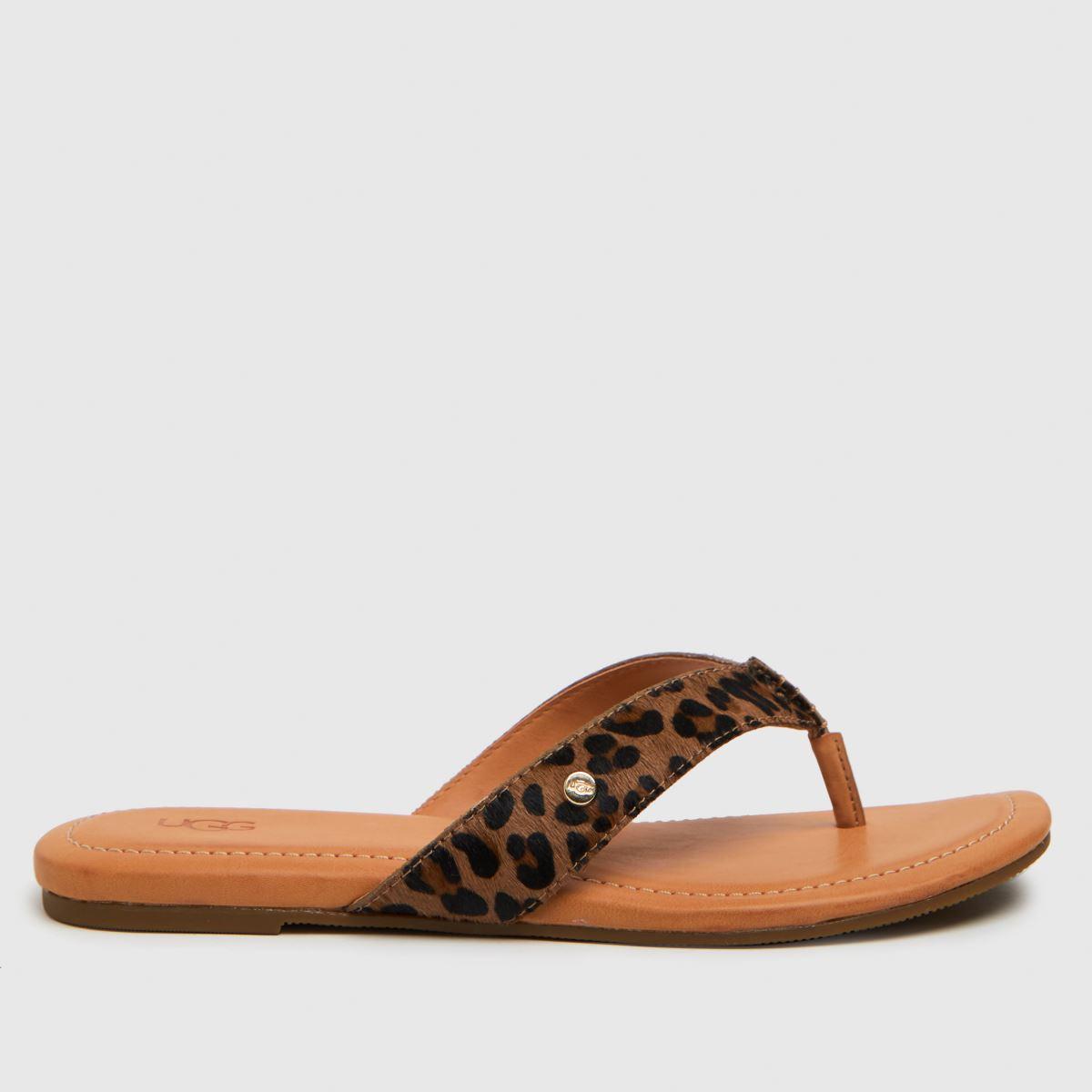 UGG Brown & Black Toulumne Leopard Sandals