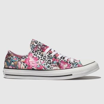 Converse Multi All Star Ox Womens Trainers