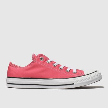 Converse Pink All Star Ox Womens Trainers