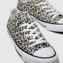 Converse All Star Leopard Print Ox 1