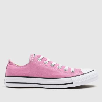 Converse Pink All Star Magic Flamingo Ox Trainers