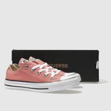 Converse all star sunblush ox 1