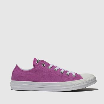 Converse Pink Chuck Taylor All Star Ox Womens Trainers