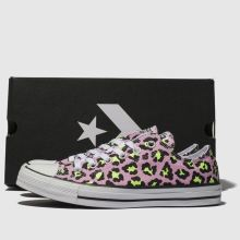 Converse All Star Courtside Animal Ox 1