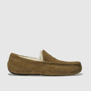 Ugg Tan Ascot Mens Slippers