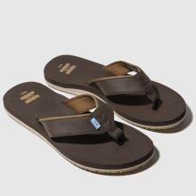 TOMS Carilo Flip-flop 1