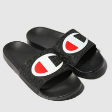 Champion multi lido slide 1