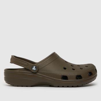 crocs Brown Classic Mens Sandals