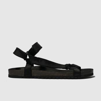 schuh black trekker sandal sandals