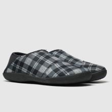 Toms Rodeo 1