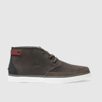 Lacoste Dark Brown Clavel 17 Mens Trainers